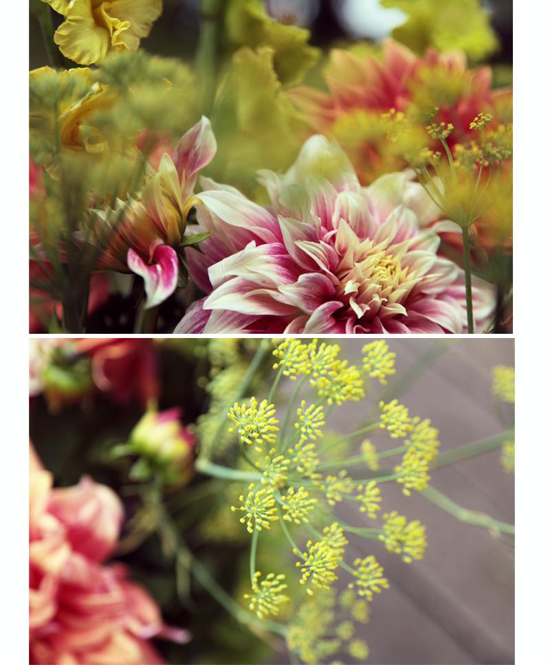 bouquet de dalhia