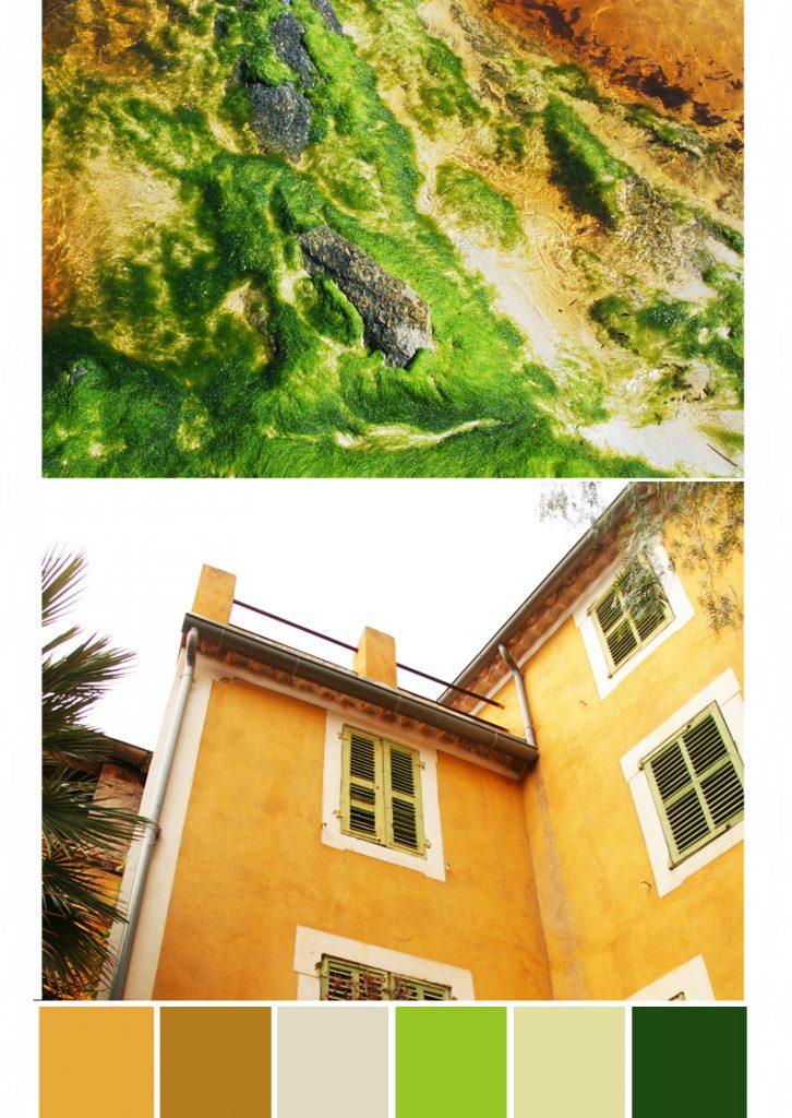 maison borme les mimosas - algues plage corse