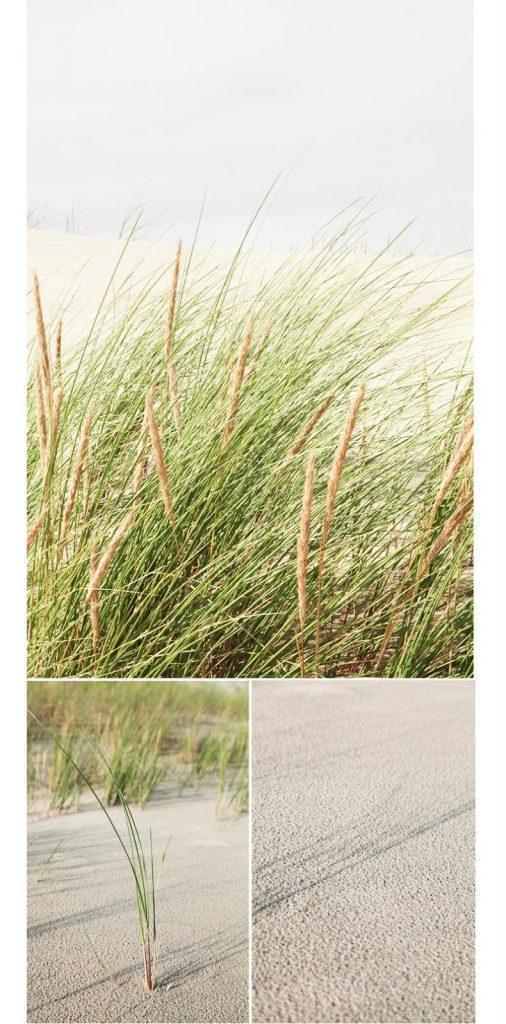 carcans plage en Gironde